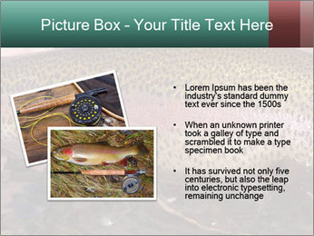 0000072684 PowerPoint Templates - Slide 20