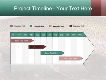 0000072684 PowerPoint Templates - Slide 25