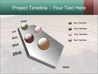 0000072684 PowerPoint Template - Slide 26