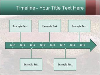 0000072684 PowerPoint Templates - Slide 28
