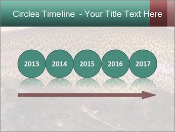 0000072684 PowerPoint Templates - Slide 29