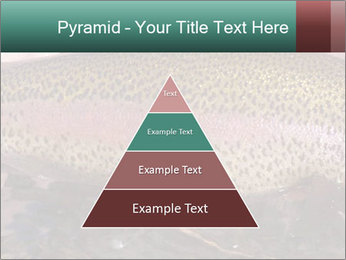 0000072684 PowerPoint Templates - Slide 30