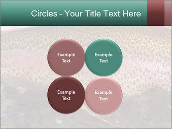 0000072684 PowerPoint Templates - Slide 38