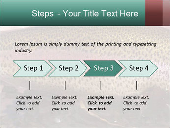 0000072684 PowerPoint Template - Slide 4