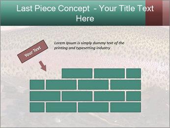 0000072684 PowerPoint Templates - Slide 46