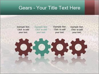 0000072684 PowerPoint Templates - Slide 48