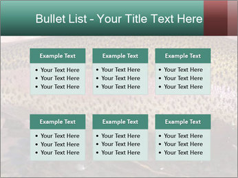 0000072684 PowerPoint Templates - Slide 56