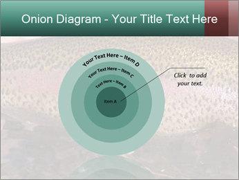 0000072684 PowerPoint Templates - Slide 61