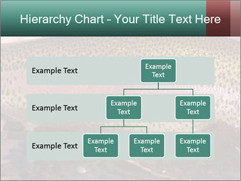 0000072684 PowerPoint Templates - Slide 67