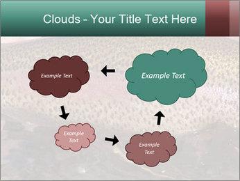 0000072684 PowerPoint Templates - Slide 72
