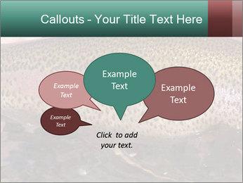 0000072684 PowerPoint Templates - Slide 73