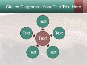 0000072684 PowerPoint Templates - Slide 78