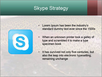 0000072684 PowerPoint Template - Slide 8