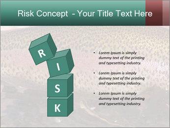 0000072684 PowerPoint Templates - Slide 81