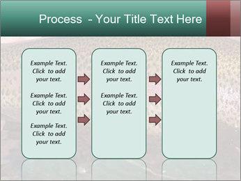 0000072684 PowerPoint Templates - Slide 86
