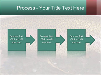 0000072684 PowerPoint Template - Slide 88