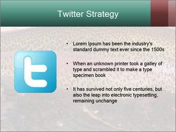 0000072684 PowerPoint Templates - Slide 9