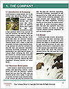 0000072684 Word Templates - Page 3