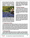 0000072684 Word Templates - Page 4