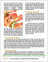 0000072685 Word Template - Page 4