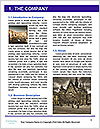 0000072686 Word Template - Page 3