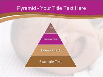 0000072688 PowerPoint Template - Slide 30