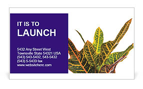 0000072691 Business Card Template