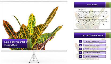 0000072691 PowerPoint Template