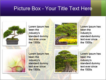 0000072691 PowerPoint Template - Slide 14