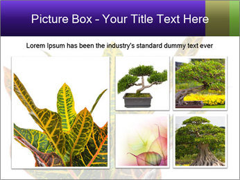 0000072691 PowerPoint Template - Slide 19