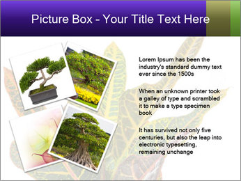0000072691 PowerPoint Template - Slide 23