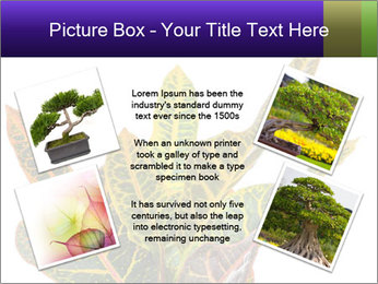 0000072691 PowerPoint Template - Slide 24