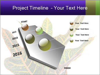 0000072691 PowerPoint Template - Slide 26