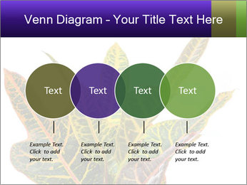 0000072691 PowerPoint Template - Slide 32