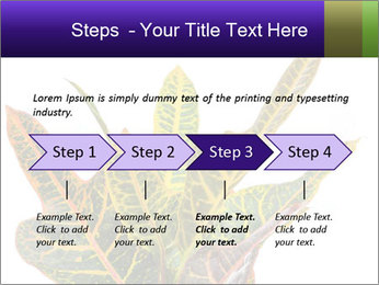 0000072691 PowerPoint Template - Slide 4