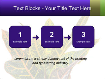 0000072691 PowerPoint Template - Slide 71