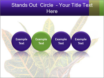 0000072691 PowerPoint Template - Slide 76