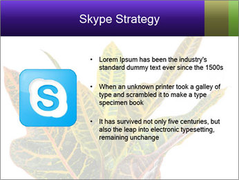 0000072691 PowerPoint Template - Slide 8