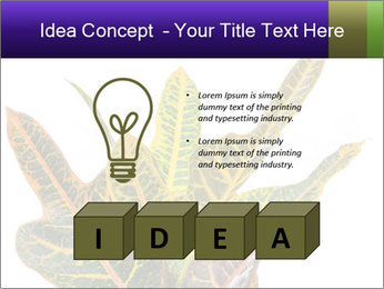 0000072691 PowerPoint Template - Slide 80