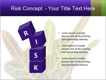 0000072691 PowerPoint Template - Slide 81