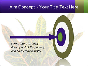 0000072691 PowerPoint Template - Slide 83