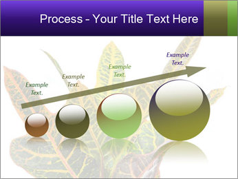 0000072691 PowerPoint Template - Slide 87
