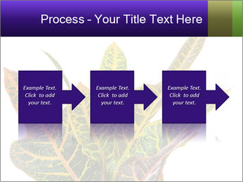 0000072691 PowerPoint Template - Slide 88
