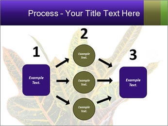 0000072691 PowerPoint Template - Slide 92