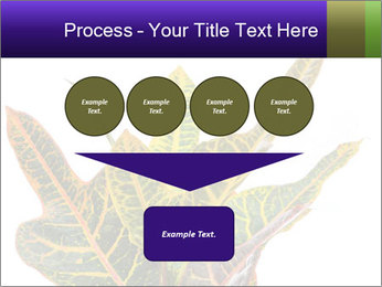 0000072691 PowerPoint Template - Slide 93