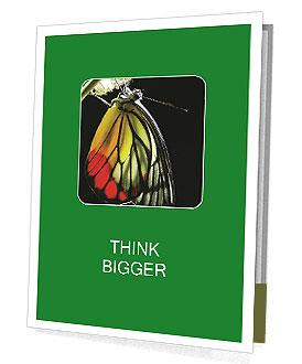 0000072697 Presentation Folder