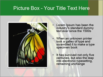 0000072697 PowerPoint Template - Slide 13