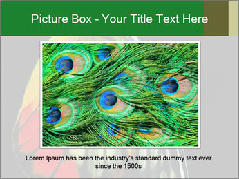 0000072697 PowerPoint Template - Slide 15