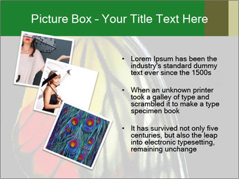 0000072697 PowerPoint Template - Slide 17
