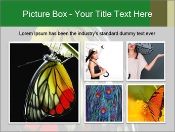 0000072697 PowerPoint Template - Slide 19